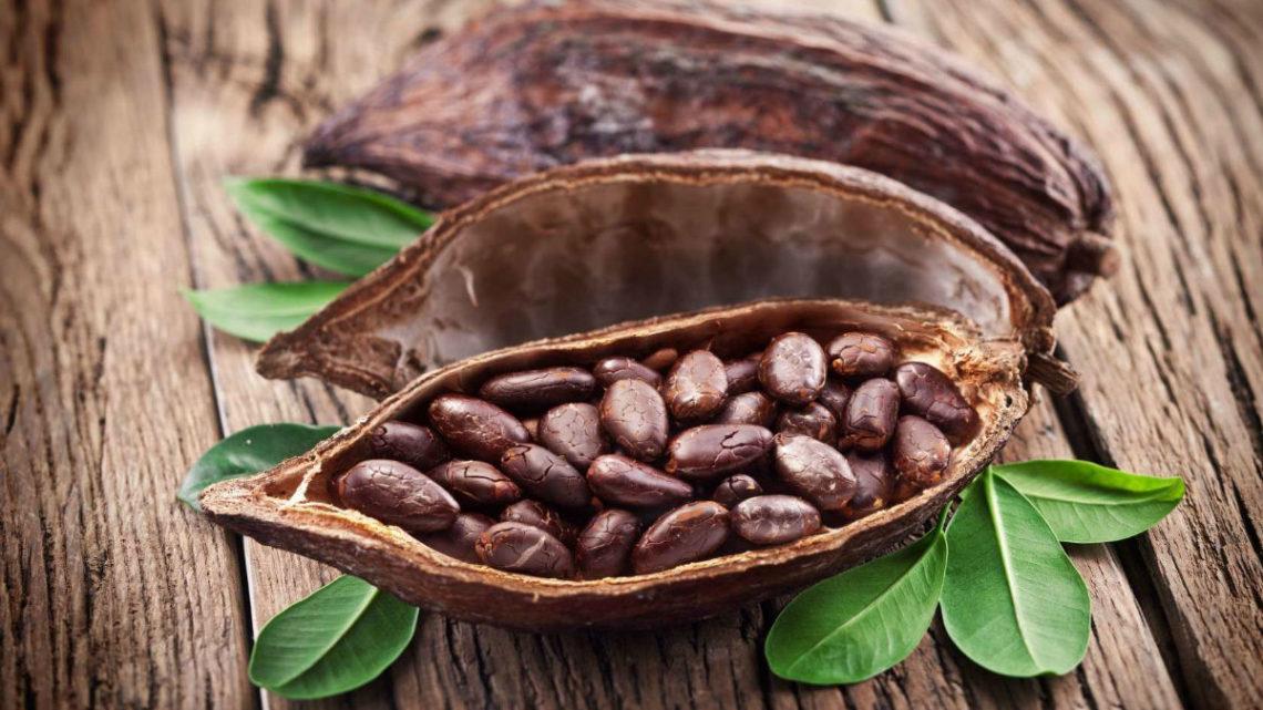 Факты о какао