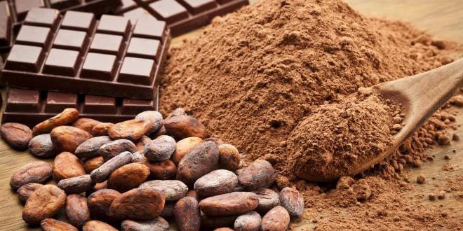 Полезные свойства какао для похудения