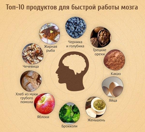 Продукты, стимулирующие работу головного мозга