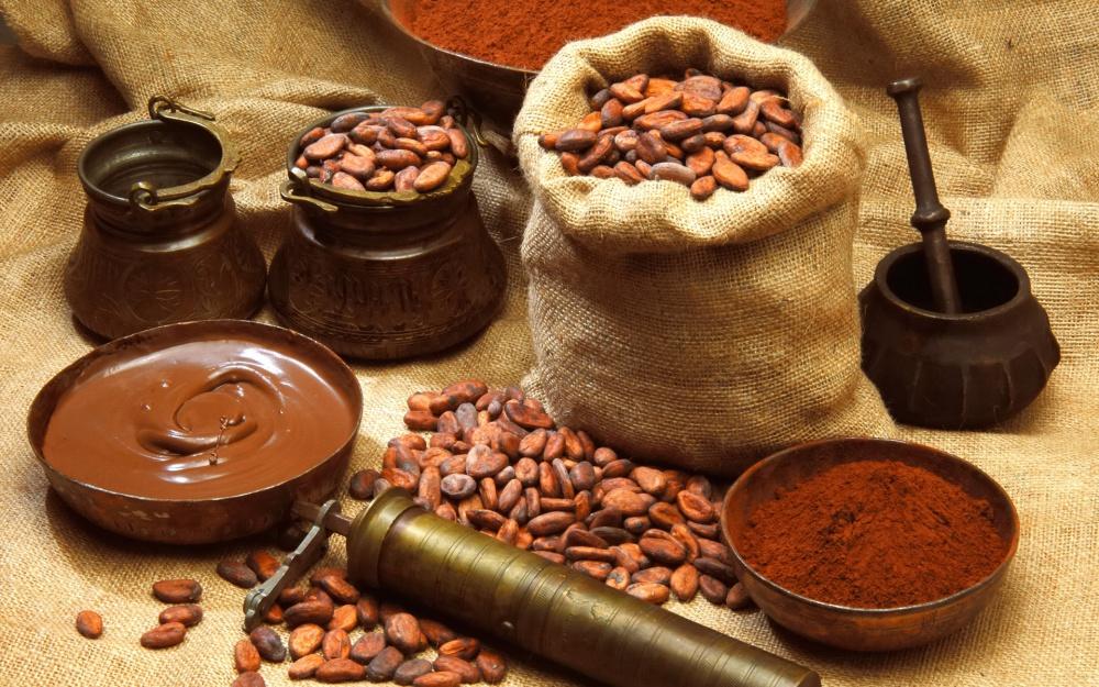 История какао ч2